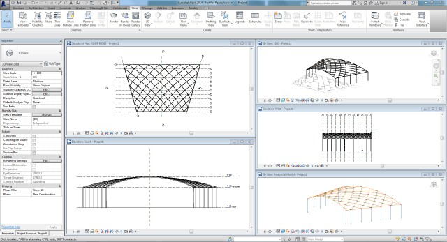Revit Structure Roof Framing